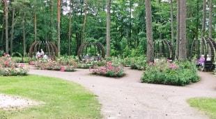 poilsis-druskininkuose-dineikos-parkas-aplinka-11427
