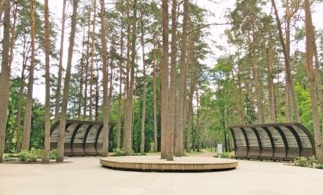poilsis-druskininkuose-dineikos-parkas-medis-11429