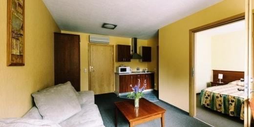 viesbutis-oro-dubingiai-liuksas-svetaine-15937