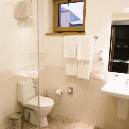 poilsis-druskininkuose-viesbutis-goda-vonia-13963