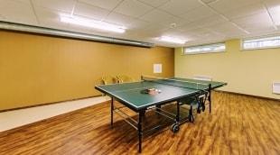 poilsis-oro-dubingiai-stalo-tenisas-15945