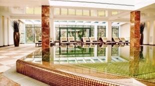 poilsis-palangoje-viesbutis-vanagupe-baseinas-15741