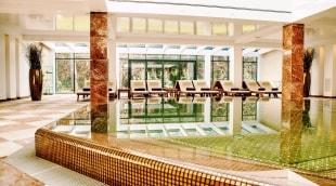 poilsis-palangoje-viesbutis-vanagupe-baseinas-14066