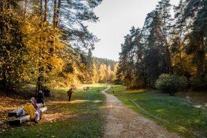 Pasivaikščiojimo vietos Vilniuje: Sapieginės pažintinis takas